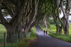 De Donkere Haag, Noord-Ierland Royalty-vrije Stock Afbeelding