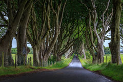 De Donkere Haag, Noord-Ierland Royalty-vrije Stock Foto