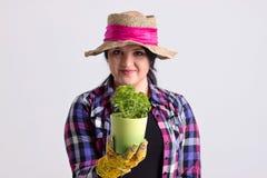 De donkere Haarvrouw in Tuinuitrusting houdt een Vers Kruid Stock Foto's