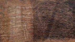 De donkere houten eiken achtergrond van de boomtextuur met oud natuurlijk patroon Royalty-vrije Stock Foto