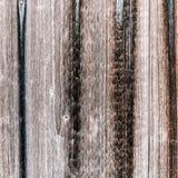 De donkere houten textuur met natuurlijke patronen Royalty-vrije Stock Foto