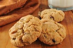 De donkere koekjes van de kersenchocoladeschilfer Royalty-vrije Stock Afbeeldingen