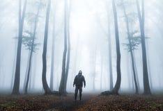 De donkere mens kijkt omhoog in nevelig bos Stock Foto