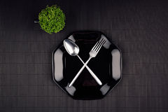 De donkere moderne minimalistic spot van het restaurantmenu omhoog met zwarte glanzende plaat, lepel, vork en groene installatie, Stock Foto