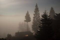 De donkere nacht achtervolgde griezelige challet in mistbomen stock foto's