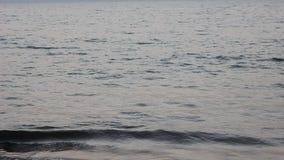 De donkere overzeese golven sluiten omhoog tegen de oceaan in de avond stock videobeelden