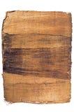 De donkere papyrus Stock Fotografie