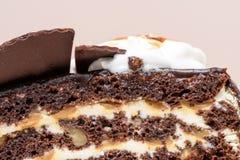 De donkere plak van de chocoladecake Stock Afbeeldingen