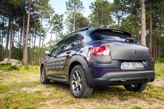 De donkere purpere Cactus van Citroën C4, achtermening Stock Afbeeldingen