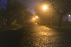 De donkere steeg iluminated door straatlantaarns Stock Afbeeldingen