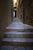 De donkere straat van steentreden Stock Fotografie