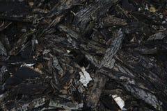 De donkere textuur van de boomschors donkere  Stock Foto