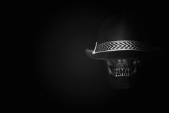 De donkere toon van de stillevenschedel Stock Foto