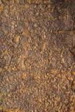 De donkere versleten roestige achtergrond van de metaaltextuur Royalty-vrije Stock Afbeeldingen