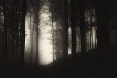 De donkere weg Stock Afbeeldingen
