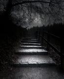 De donkere weg Royalty-vrije Stock Fotografie