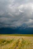 De donkere wolken van het onweer over gebied Stock Afbeeldingen