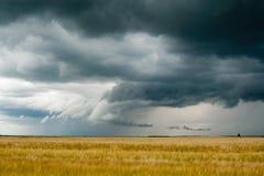 De donkere wolken van het onweer over gebied Stock Foto