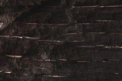 De donkergrijze of zwarte houten achtergrond van de textuurclose-up Royalty-vrije Stock Fotografie
