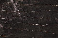 De donkergrijze of zwarte houten achtergrond van de textuurclose-up Royalty-vrije Stock Afbeelding