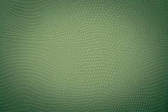 De donkergroene Textuur van de Slanghuid Stock Afbeeldingen