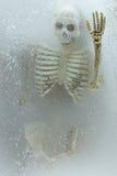 De Dood van het kunstconcept op ijs, skelet in ijs Royalty-vrije Stock Foto's