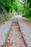 De Doodsspoorweg langs de klip en de boom Royalty-vrije Stock Foto
