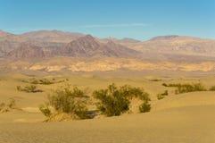 De Doodsvallei van Mesquite Vlakke Duinen Royalty-vrije Stock Afbeeldingen
