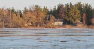 De dooi vroege lente tegen de achtergrond van een huis in het bos stock video
