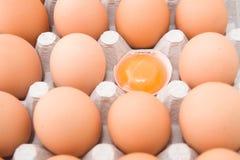 De dooier van eieren Stock Foto