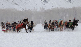 De door paarden getrokken argelijke Stock Fotografie