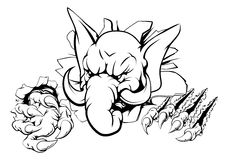 De doorbraak van de olifantsklauw Stock Fotografie
