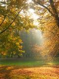 De doorbraak van het zonlicht Stock Fotografie