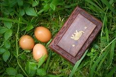 De doos en de eieren sluiten omhoog op gras, geheim doosconcept Stock Foto
