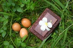 De doos en de eieren sluiten omhoog op gras, geheim doosconcept Royalty-vrije Stock Afbeeldingen