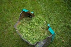 De doos van de grasmaaimachine met groen scherp gras, het schoonmaken Royalty-vrije Stock Foto