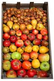 De Doos van het fruit. Stock Fotografie