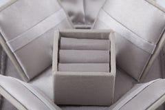 De doos van het juweel Stock Fotografie