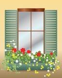 De doos van het venster Stock Foto's