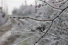 De dorpsstraat in ijs Stock Afbeeldingen