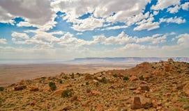 De dorre schoonheid van de woestijn van Arizona Royalty-vrije Stock Foto
