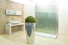 De douche van de badkamers Royalty-vrije Stock Afbeeldingen