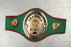 De In dozen doende kampioen WBC van de wereldriem stock foto