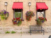 De dozen van de bloem en hangende installaties Royalty-vrije Stock Foto