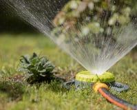 De draagbare sproeier bespuit water op gras van gazonang Stock Foto's