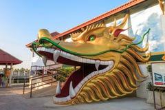 De draak hoofddeur Stock Foto's