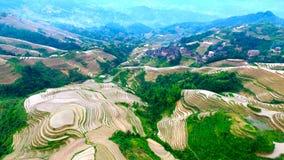De Draak` s rug van Guangxiguilin Royalty-vrije Stock Fotografie