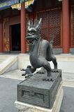 De draak van de Yonghegong statye Stock Afbeelding