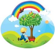 De dragende boom van de jongen in een karretje Stock Foto