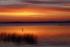 De Dramatische Zonsopgang van Champlain van het meer stock foto's